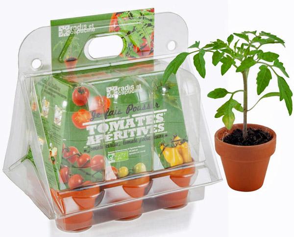 Serre plastique de tomates cerises. Mon premier jardin, Radis et capucine, https://www.oxybul.com